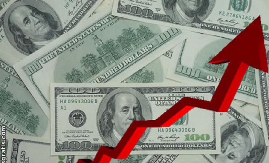 subio-le-dolar