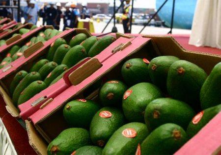 Agroexportaciones: ¿Cuáles tienen mayor demanda?
