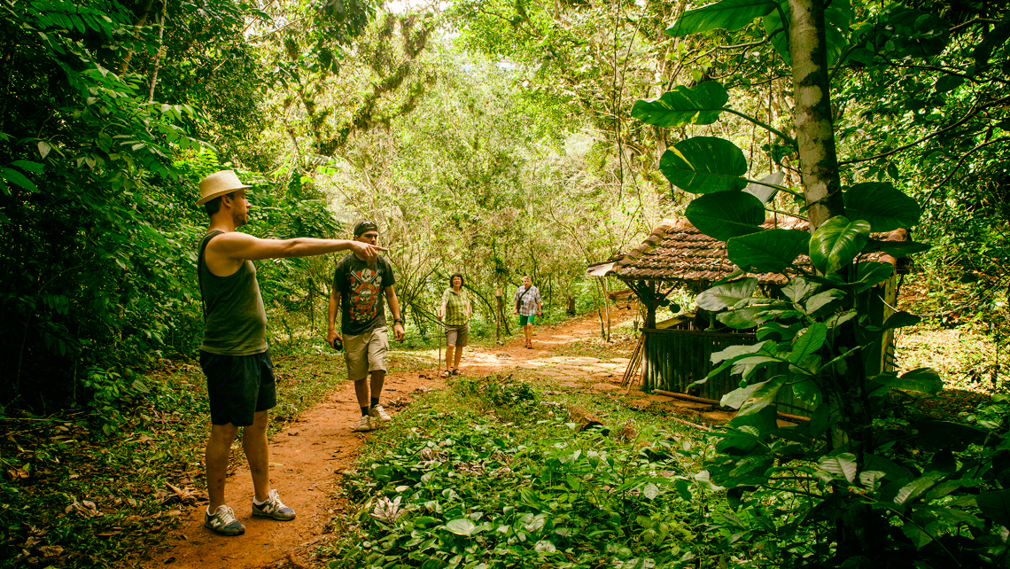 Ecoturismo: 5 negocios para ganar dinero