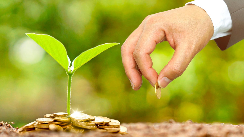 Gana Dinero: 8 Ideas de negocios ecológicos