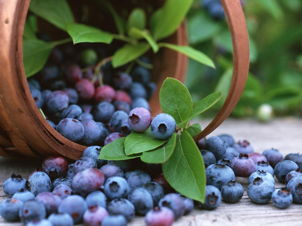 Agroexportaciones: ¿Seguirán creciendo?