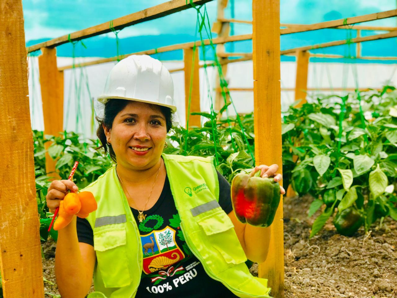 5 Emprendimientos ecoamigables en el Perú