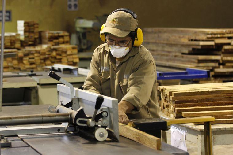 Industria iniciaría recuperación en enero