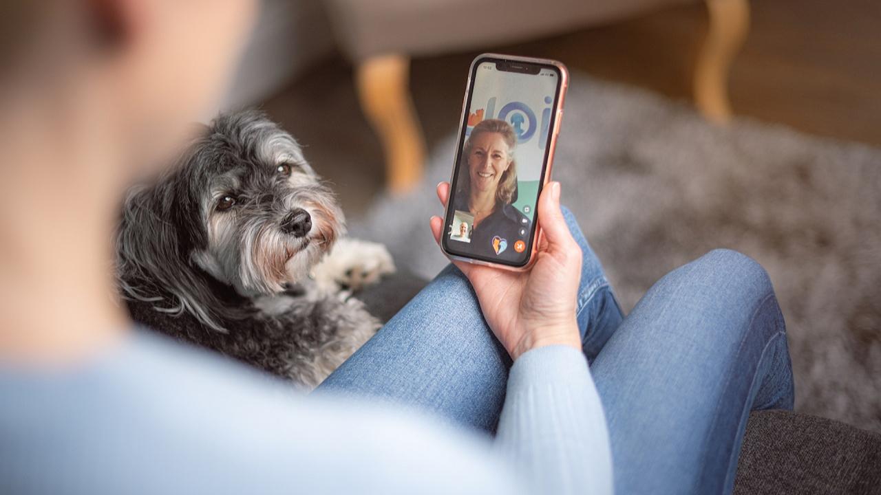 7 Ideas de negocio en el rubro de mascotas